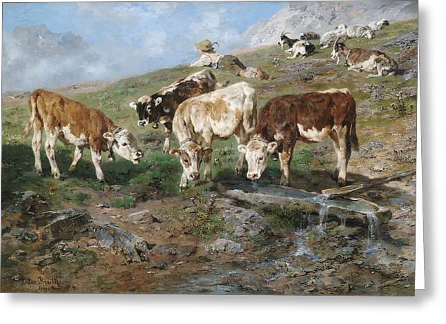 Young Cattle In Tyrol Greeting Card by Mountain Dreams