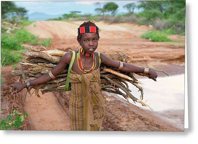 Young Hamar Girl Collecting Fire Wood Greeting Card by Tony Camacho