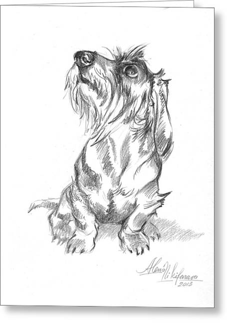 Young Wire-haired Dachshund Looking Up Greeting Card by Alena Nikifarava