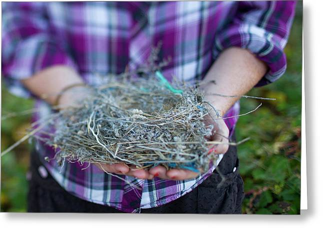 Young Woman Holding A Birds Nest Greeting Card