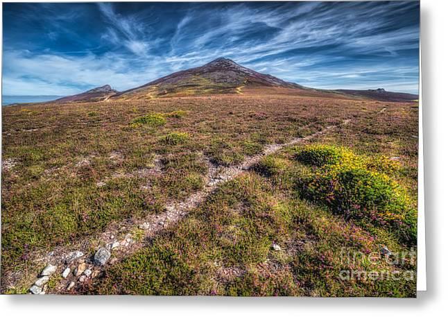 Yr Eifl Trail Greeting Card by Adrian Evans