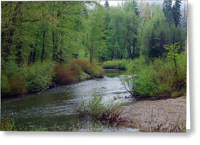 Yuba River Old Route 40 Greeting Card