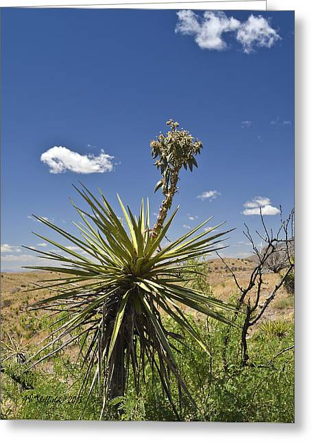 Yucca Fights Back Greeting Card