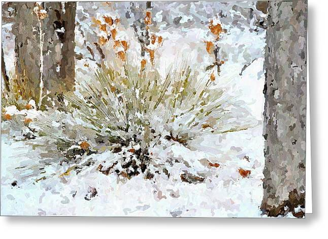 Yucca In The Snow Greeting Card by John Cullum