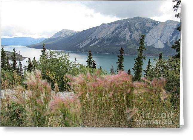 Yukon Blue Greeting Card