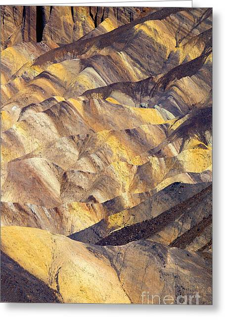 Zabriskie Color Greeting Card
