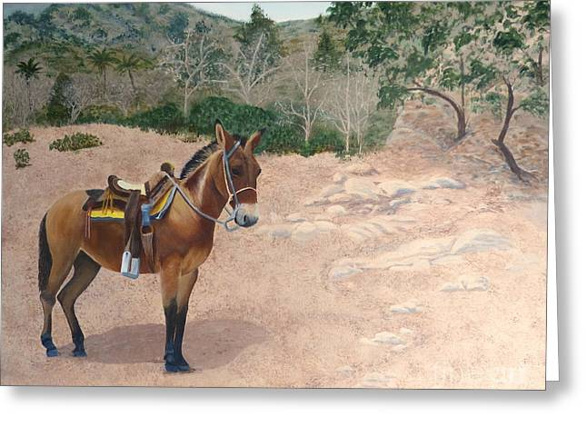 Zachary The Mule Greeting Card
