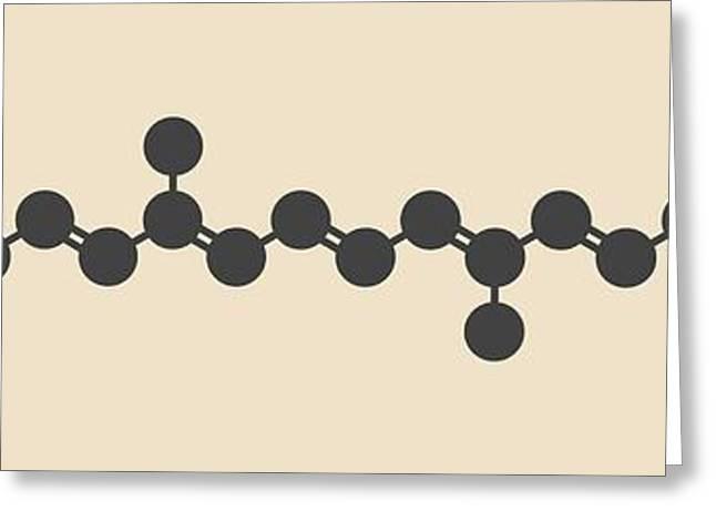 Zeaxanthin Yellow Pigment Molecule Greeting Card