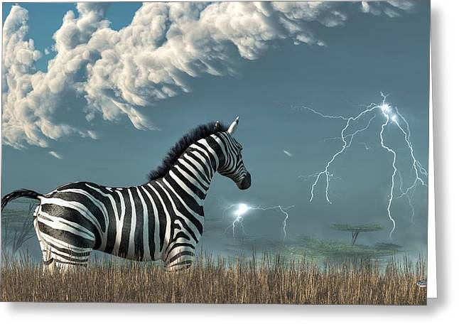 Zebra And Approaching Storm Greeting Card