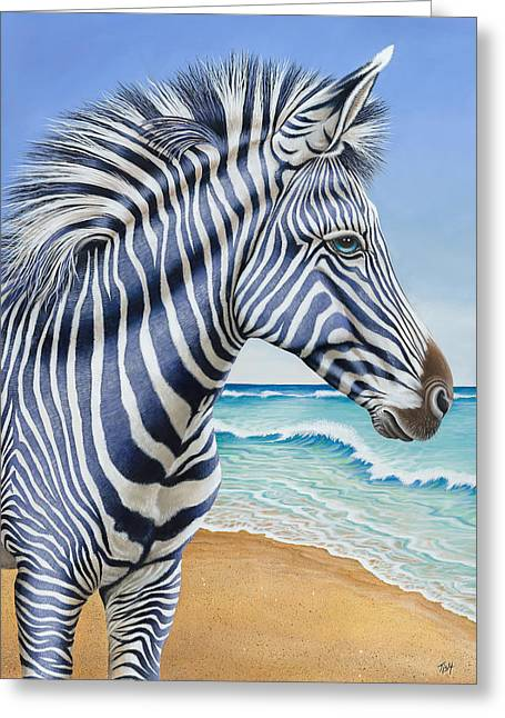 Zebra By The Sea Greeting Card
