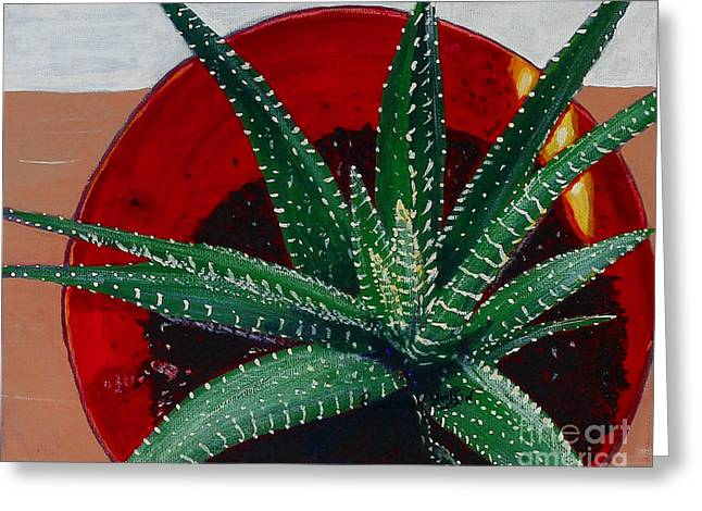 Zebra Cactus In Red Glass Greeting Card by Barbara Griffin