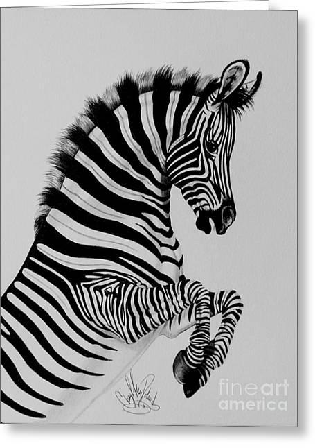 Zebra Colt Playing Greeting Card by Cheryl Poland
