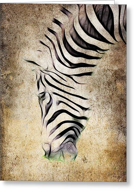 Zebra Fade Greeting Card