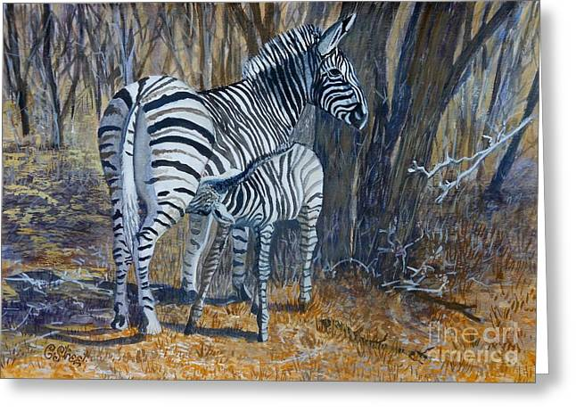 Zebra Mother And Foal Greeting Card by Caroline Street