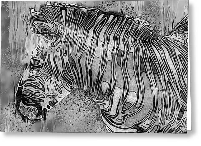 Zebra - Rainy Day Series Greeting Card by Jack Zulli