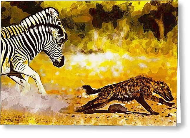 Zebra Stallion Chasing Young Hyena Greeting Card by Don Kuing