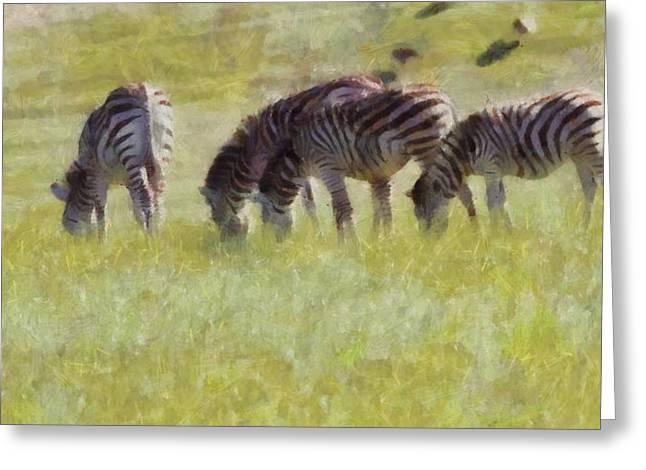 Zebras In Africa Greeting Card