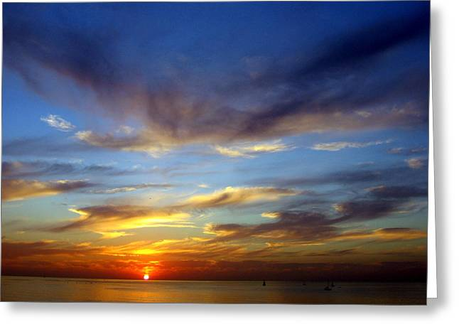 Zebulun Sunset Greeting Card by Sheila Savage