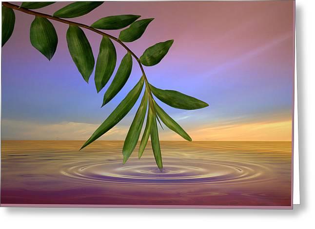 Zen Art Greeting Card by Nina Bradica