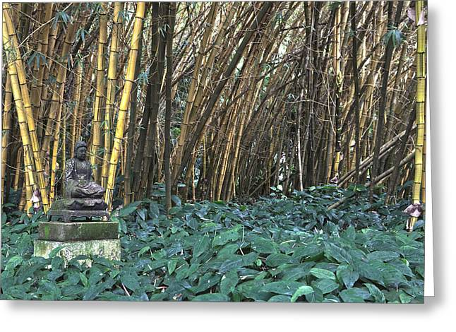 Zen Bamboo Greeting Card