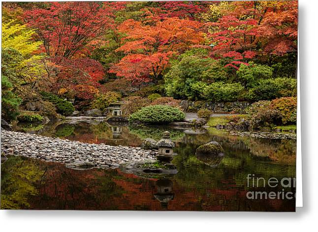 Zen Foliage Colors Greeting Card by Mike Reid