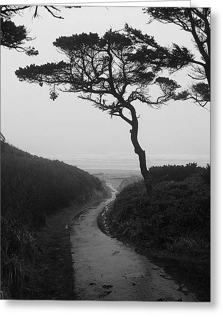 Zen Path Greeting Card