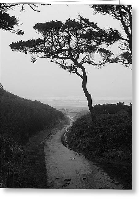 Zen Path Greeting Card