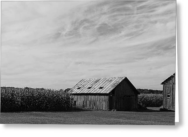 Zink Rd Farm 2 In Black And White Greeting Card