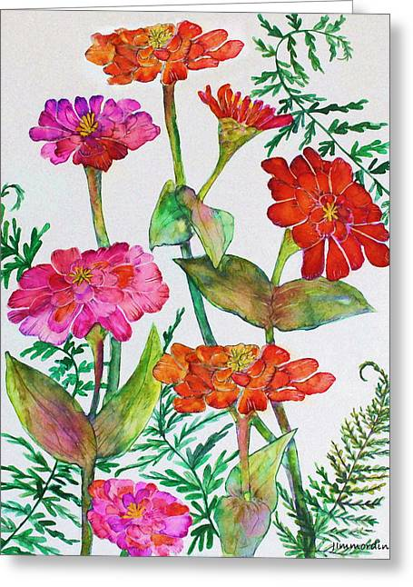 Zinnia And Ferns Greeting Card by Janet Immordino