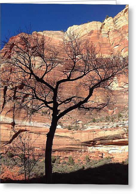 Zion Canyon Tree #2 Greeting Card by Feva  Fotos