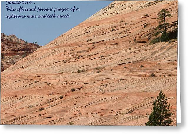 Zion James 5-16 Greeting Card by Nelson Skinner