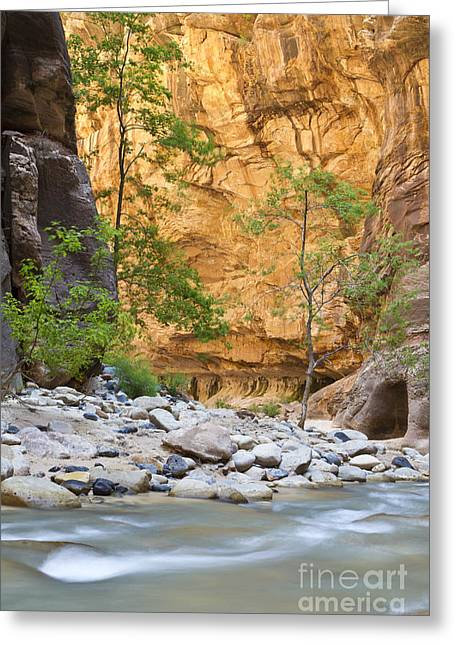 Greeting Card featuring the photograph Zion Narrows by Bryan Keil