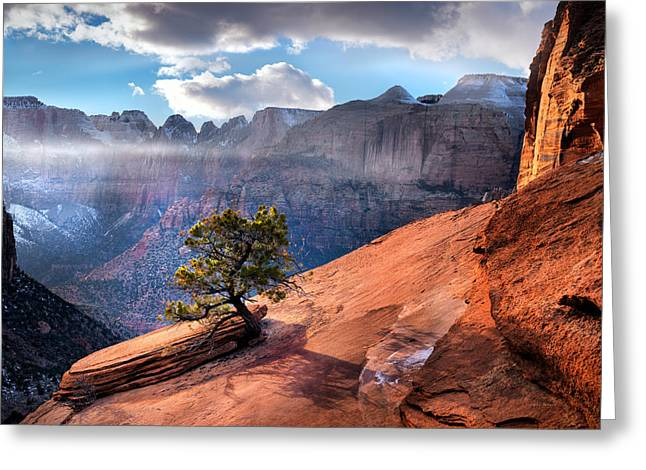 Zion National Park Light Greeting Card by Leland D Howard