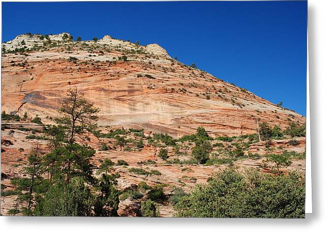 Greeting Card featuring the photograph Zion National Park by Robert  Moss