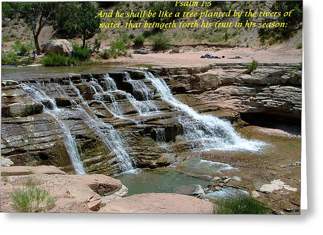 Zion Psalm 1-3 Greeting Card by Nelson Skinner