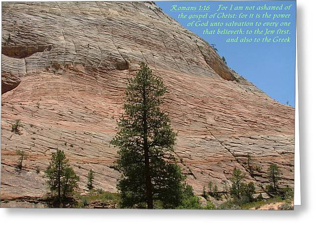 Zion Romans 1-16 Greeting Card by Nelson Skinner