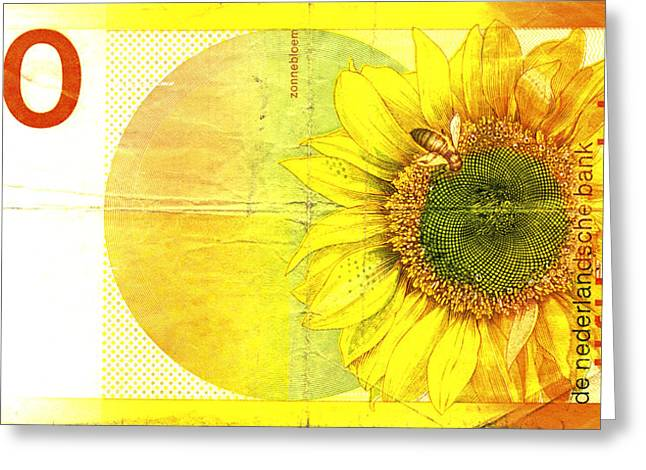 Zonnebloem Greeting Card