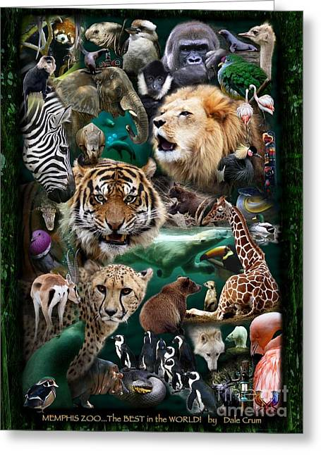 Zoo Collection Greeting Card by Dale Crum