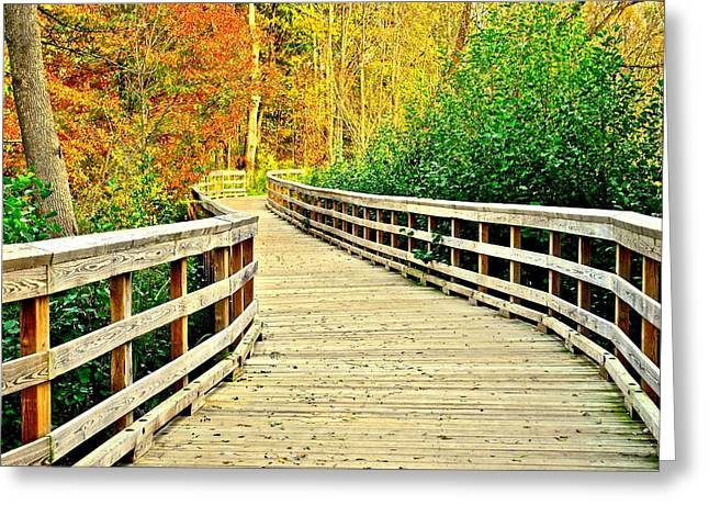 Zoom Zoom Walking Path Greeting Card by Frozen in Time Fine Art Photography