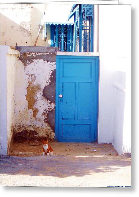 Blue Door Cat Greeting Card by Anthony Novembre