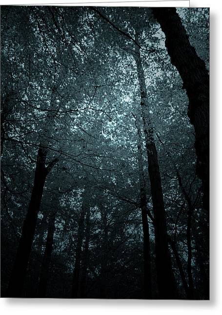Greeting Card featuring the photograph  Dark Forest Silhouetted Against Sky by Ethiriel  Photography