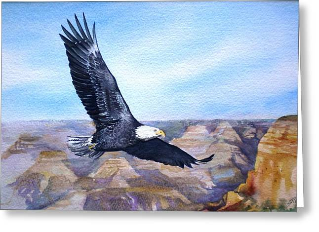 Eagle   American Bald Eagle Greeting Card by Sandra Phryce-Jones