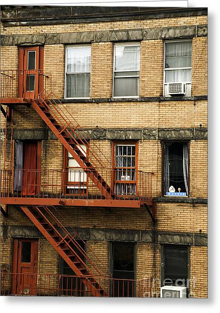 Fire Escapes - Nyc Greeting Card by Madeline Ellis