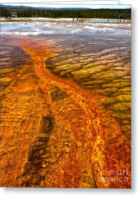 Grand Prismatic Spring In Yellowstone National Park - 02 Greeting Card by Gregory Dyer
