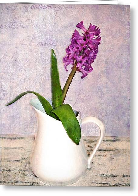 Hyacinth Greeting Card by Kathy Jennings