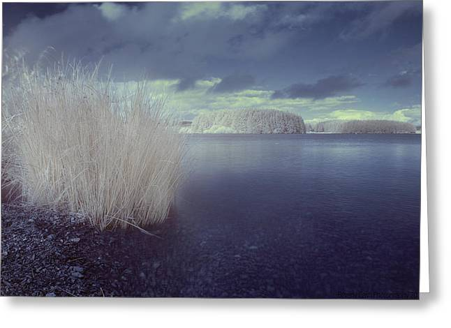 Greeting Card featuring the photograph  Infrared At Llyn Brenig by Beverly Cash