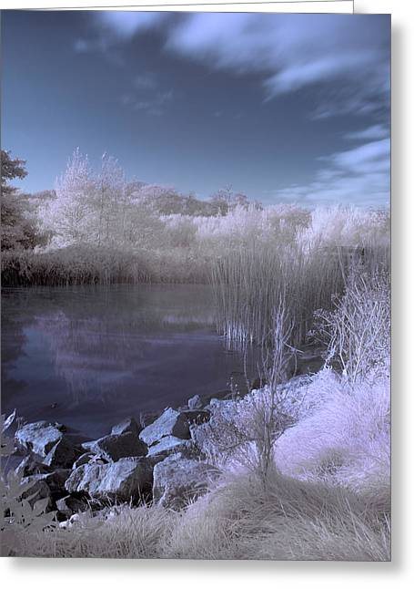 Greeting Card featuring the photograph  Infrared Pond by Beverly Cash