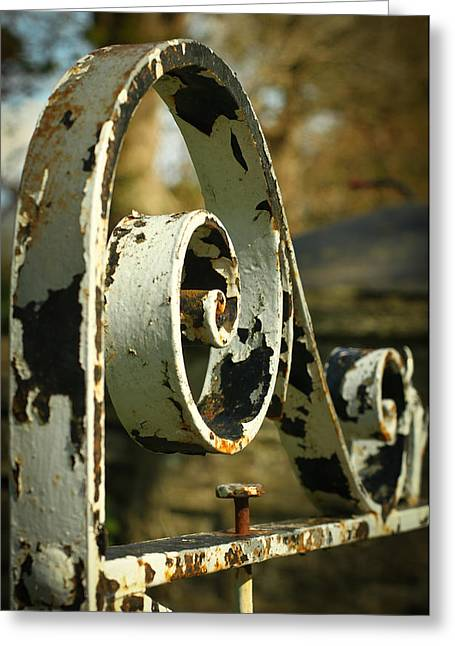 Iron Gate Greeting Card by Jacqui Collett