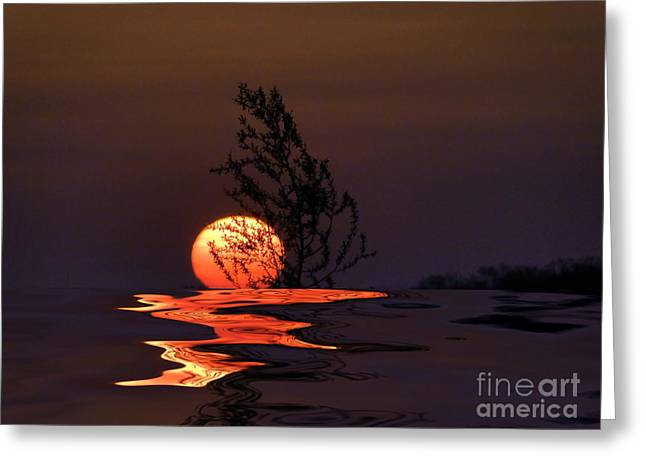 Our Sun Greeting Card by Renate Knapp