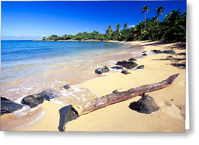 Pinones  Beach Scenic Greeting Card by George Oze